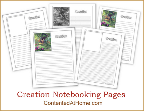 Creation-Notebooking-Pages1