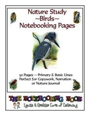 birdnotebookpages