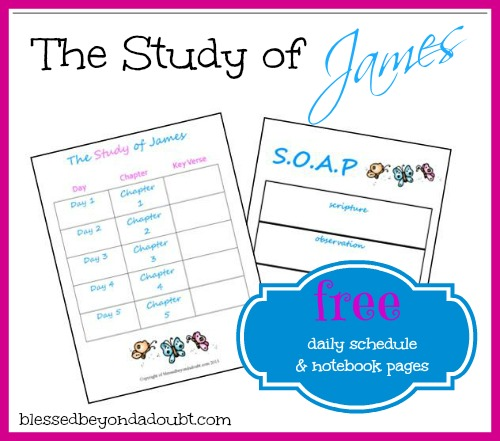 Study of James Daily Schedule 7 Notebook Pages