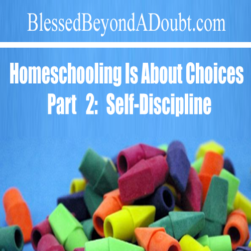 Homeschooling is About Choices, Part 2
