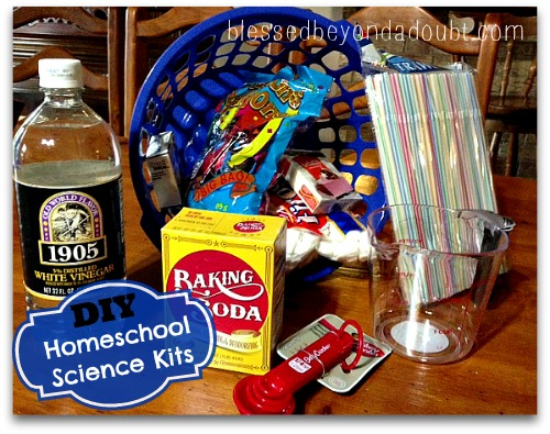 DIY homeschool science kit