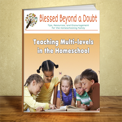 Teaching Multi-Levels in the Homeschool eBook cover 3d 400x400