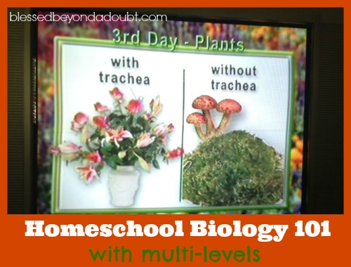 homeschool biology101