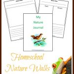 Homeschool Nature Wlaks