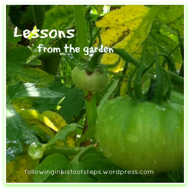 picmonkey-collage-fihf-lessons-from-the-garden