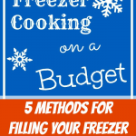 Freezer Cooking on a Budget