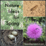 Nature Ideas for Spring
