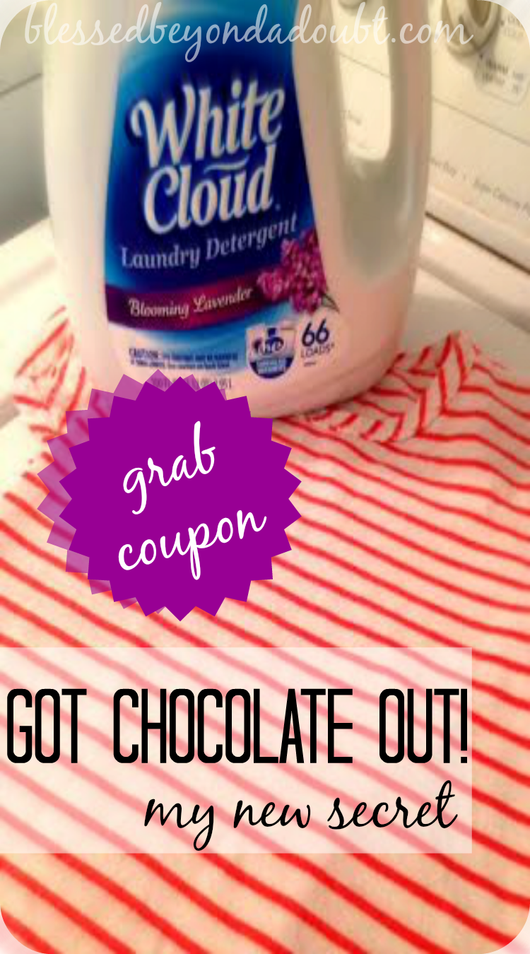 Have you tried White Cloud laundry detergent yet? Grab your coupon!