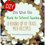 Great list of Trail Mix recipes!