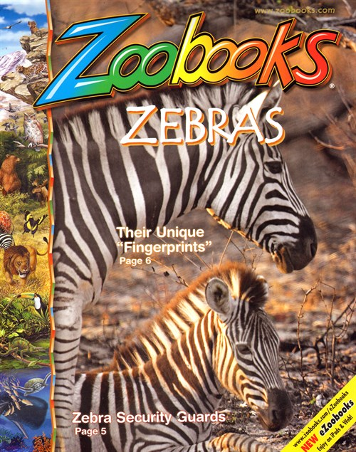 zoobooks magazine is only 2 50 per issue   blessed beyond
