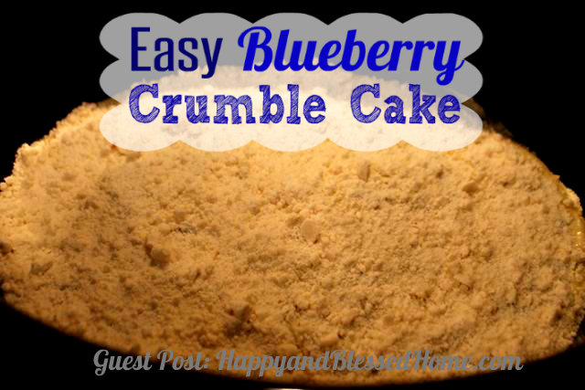 Easy-Blueberry-Crumble-Cake-Step2--HappyandBlessedHome.com