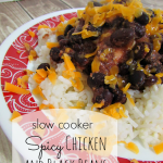 This easy spicy chicken in black bean  recipe is simply made in the slow cooker! It's a family favorite.