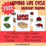 FREE Ladybug Life Cycle Readers