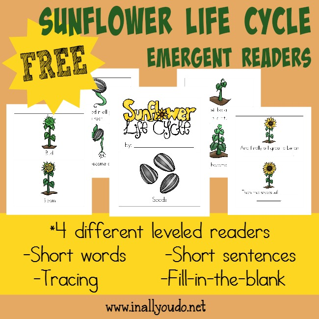 FREE Sunflower Life Cycle Readers