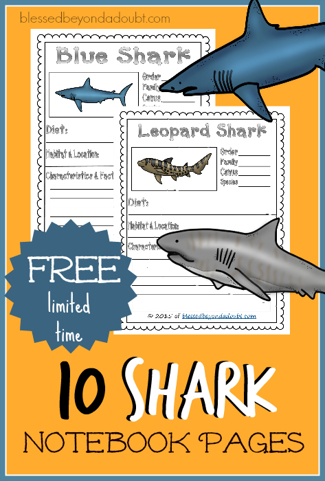 FREE Shark Notebook Pages