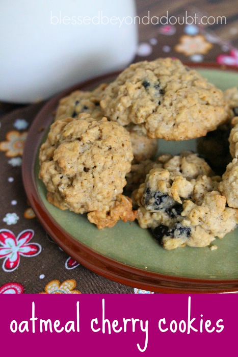 These are wonderful! Try these oatmeal cherry cookies today!