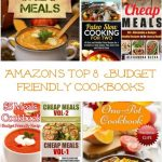 Amazon's Top 8  Budget Friendly Cookbooks!