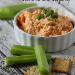 The BEST Buffalo Chicken Ranch Dip