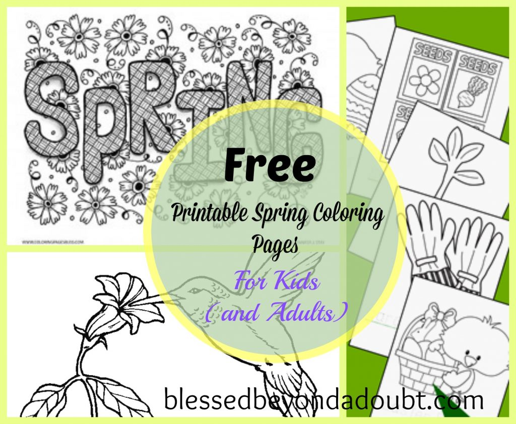 20 free printable spring coloring sheets for kids and for Free printable spring coloring pages for adults