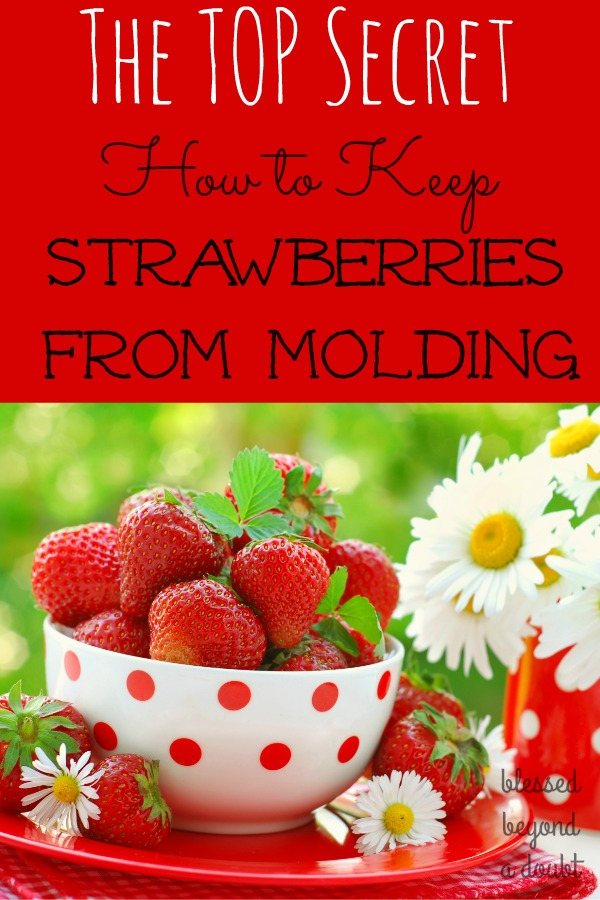 Learn the top secret on how to keep your strawberries from molding. You already have the ingredient at home. This trick on how to keep your strawberries lasting longer will save you money.