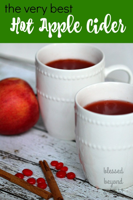 easy-hot-apple-cider-recipe_blog-2