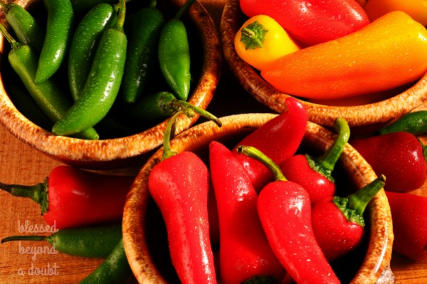 Closeup of an assortment of Sweet Peppers and Chilies in Bowls misted with water on a rustic wooden surface.