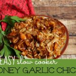 So EASY Slow Cooker Honey Garlic Chicken Recipe