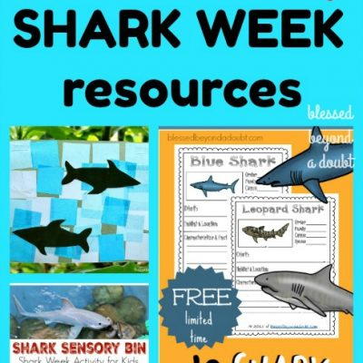 All About Sharks| Shark Week Activities and Resources