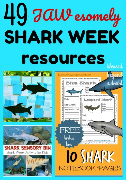Learn all about sharks with these shark week resources! There are over 50 shark week resources to make Shark Week JAWsome!  #sharkweek