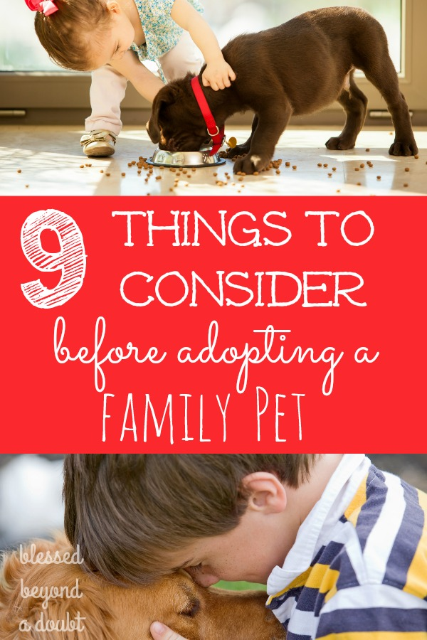 9 Things to Think About before Adding a Family Pet