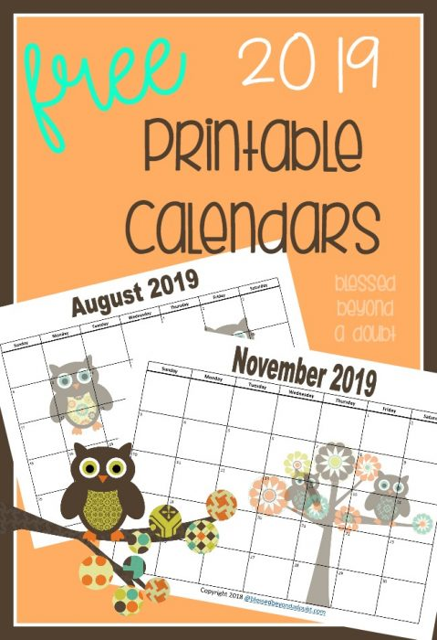 FREE 2019 Monthly Printable Calendars - Owl Themed - Blessed Beyond
