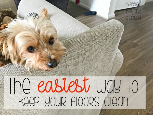 Easiest way to Clean Laminate Wood Floors with Pets