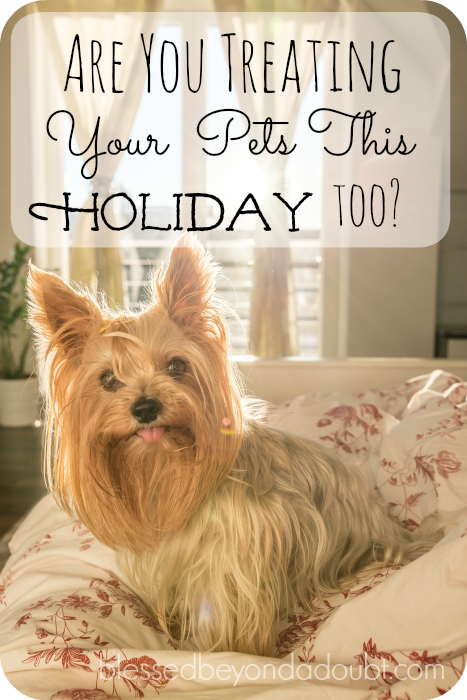 Check out how we bribe or award our beloved pets during the holidays.